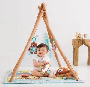 Skip Hop Baby Play Gym